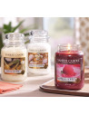 Sorbet Framboise - Collector Yankee Candle