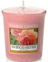 Sun-drenched Apricot Rose Votive