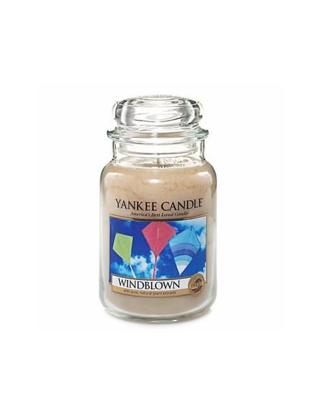 WindBlow- Collector Yankee Candle
