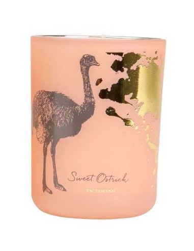 Bougie Bird Collection Pink