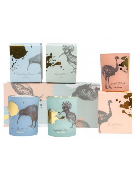 Coffret 3 bougies - Bird Collection