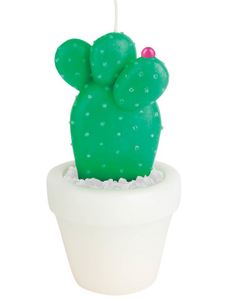 Bougie Cactus Rond Small