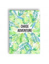 Greeting Card Chase Adventures