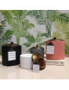 Hygge Wild Fig and Cedar - Petit Format - Paddywax - Ma Jolie Bougie