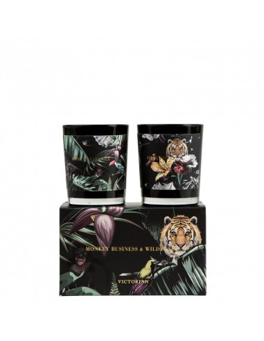 Coffret Wilderness et Monkey Business